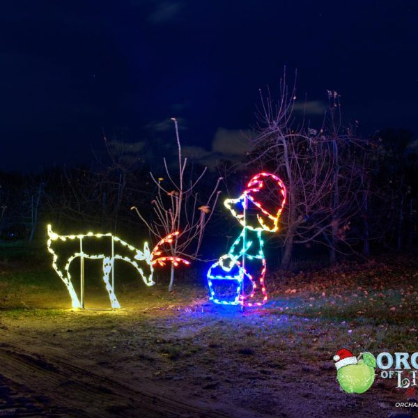 lights elf feeding deer