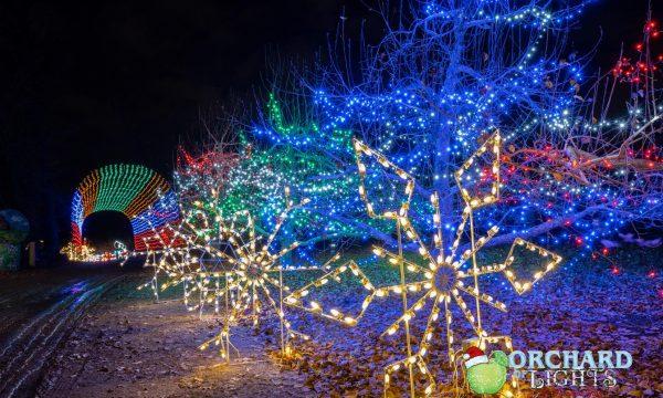 lights snowflake lane